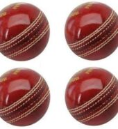 Leather Cricket Ball for Test/One-Day Matchs and Practice – Set of 4 (Red)